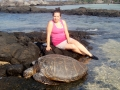 Hilo Hawaii  sea turtle.
